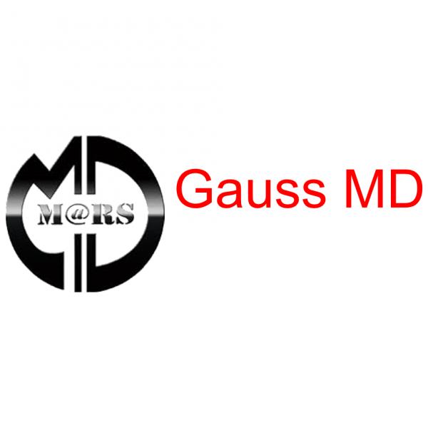 Gauss MD metaaldetector